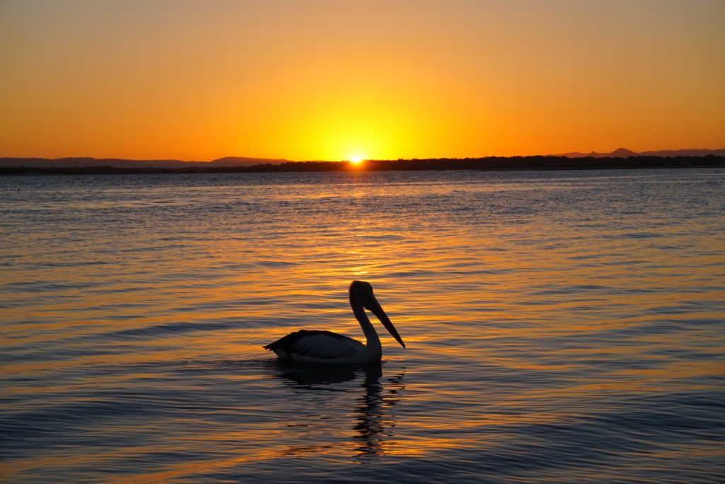 Bribrie Island, Australia Sunset