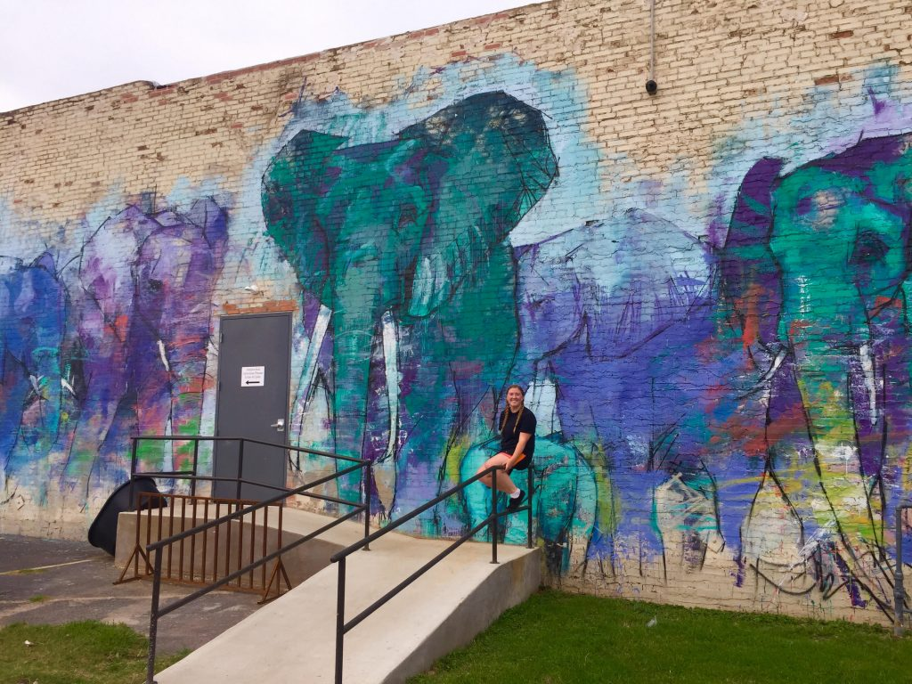 Elephant Mural Travel Dallas