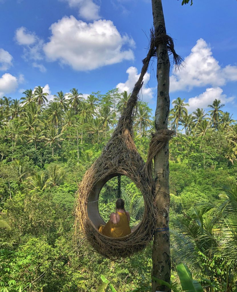 bali swing bird nests ubud indonesia buy the plane ticket