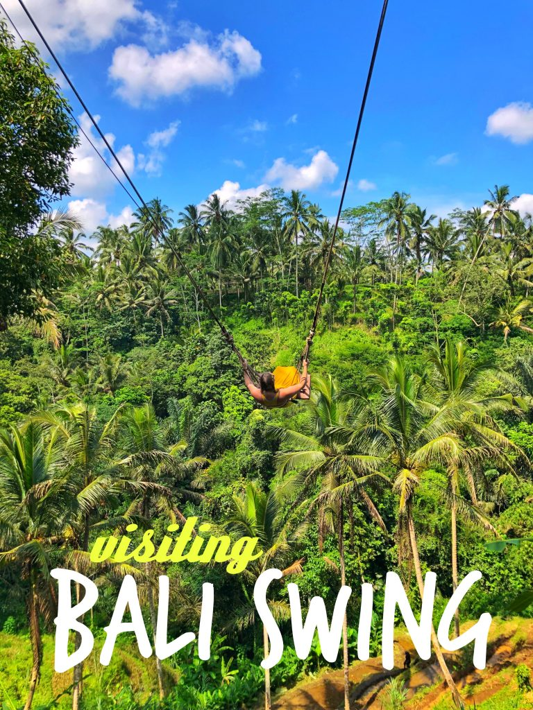 Visiting Bali Swing Bird Nests Ubud Indonesia
