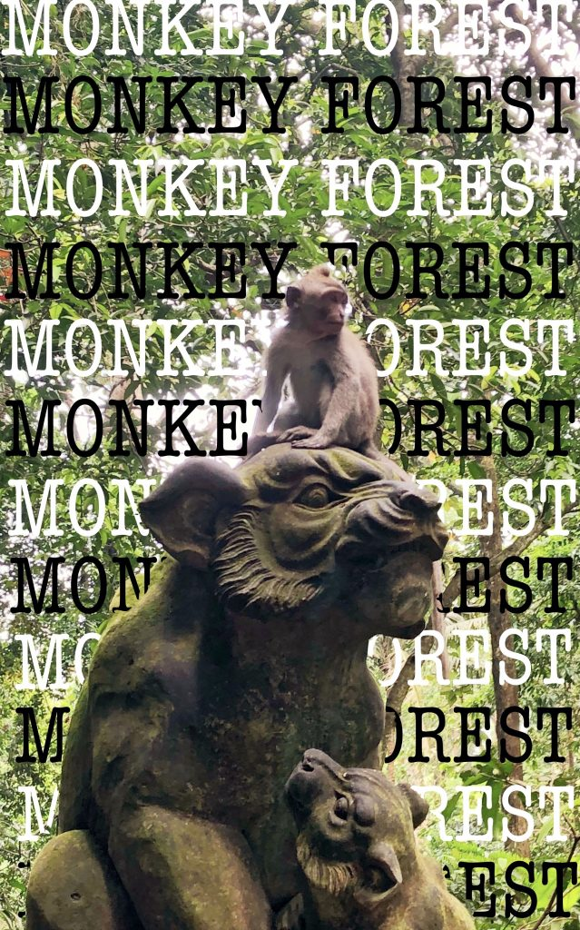 Visiting the Monkey Forest Ubud Bali Indonesia Stuff to do in Bali Bali Attractions 5