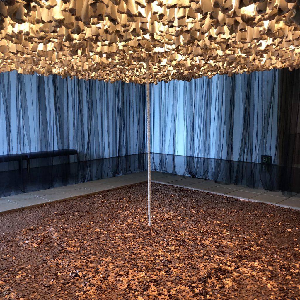 Blanton Museum of Art Austin Texas Cildo Meireles