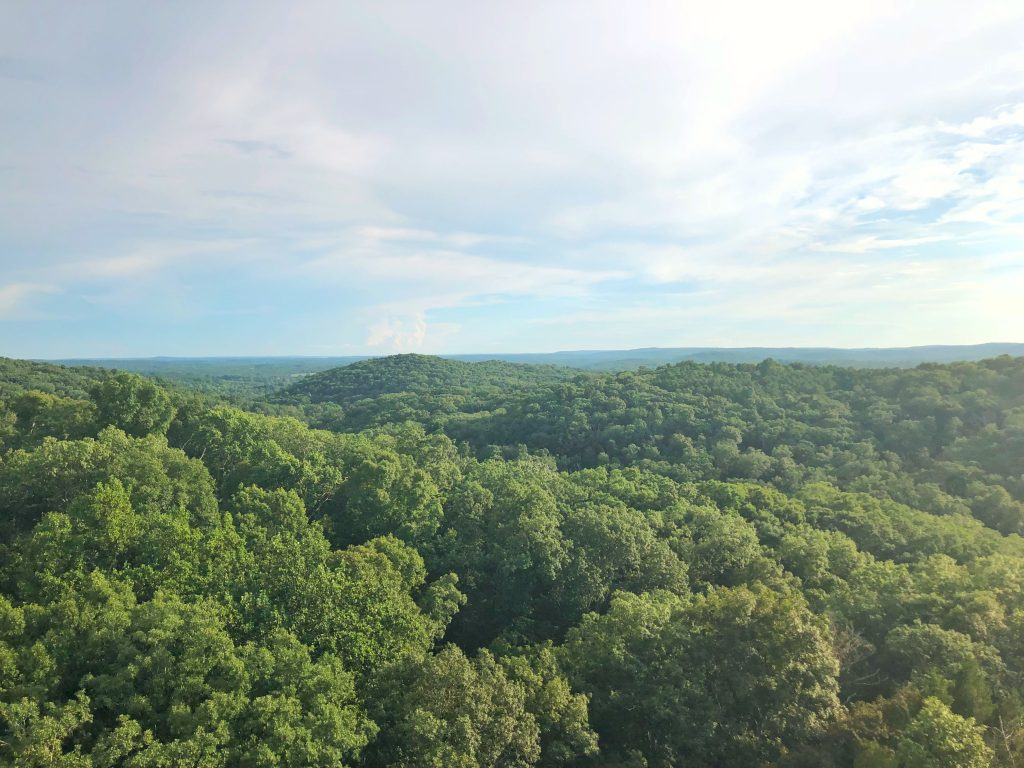Garden of the Gods Southern Illinois Harrisburg Shawnee National Forest Hiking Budget Travel